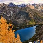 Devin Monas – Larch Trees in the Enchantments